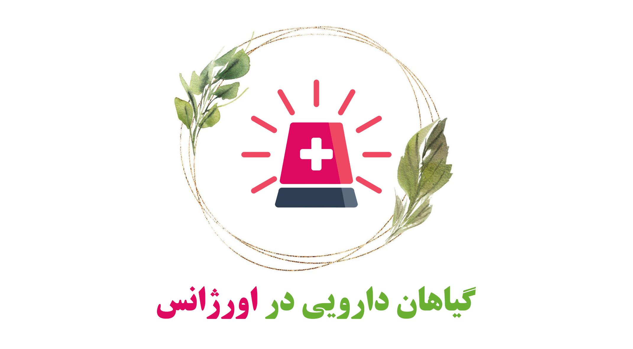 کاربرد گیاهان دارویی در اورژانس 1