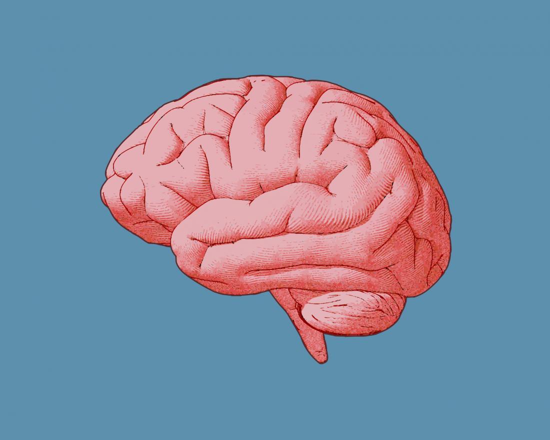 ️ 6 راهکار برای تقویت ذهن و عملکرد مغز